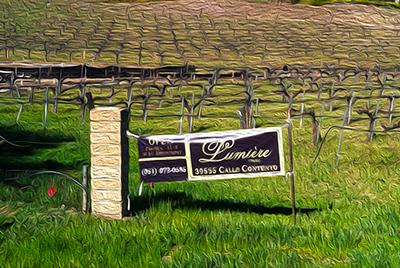 Lumiere Winery