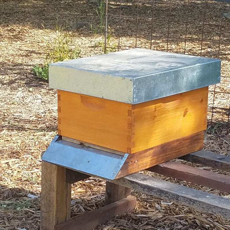 Bee boxes at the French Laundry Culinary Garden Yountville