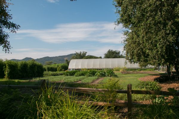 The Hoophouse at the French Laundry Culinary Gardens