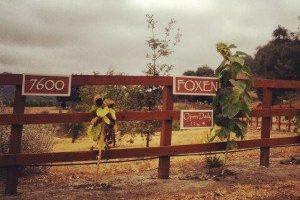 Foxen Canyon & Los Olivos