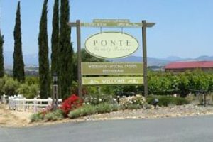 """If you like it, it's good wine"" – Ponte Family Estate"