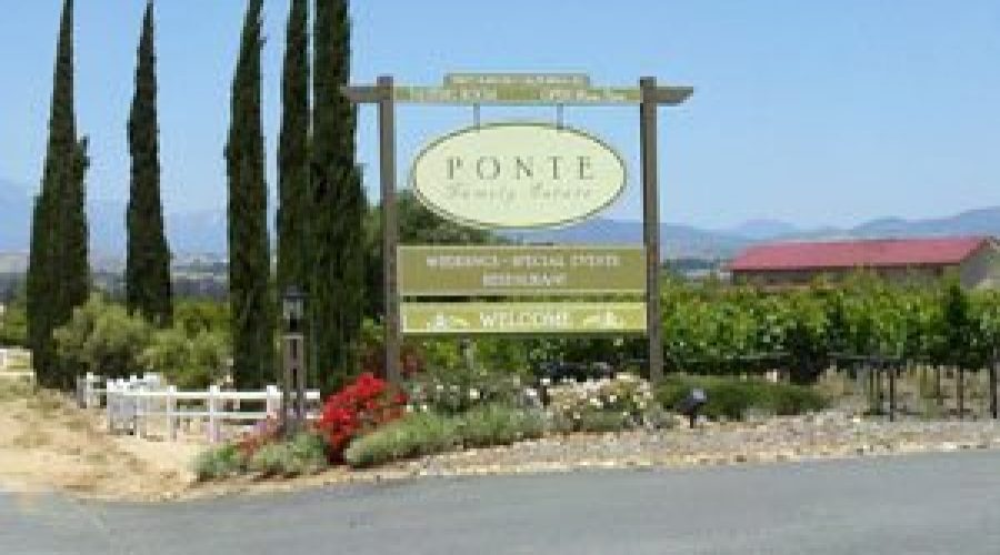 """""""If you like it, it's good wine"""" – Ponte Family Estate"""
