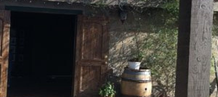 """Simple Concept, Complex Wines"" – Palumbo Family Vineyards & Winery"