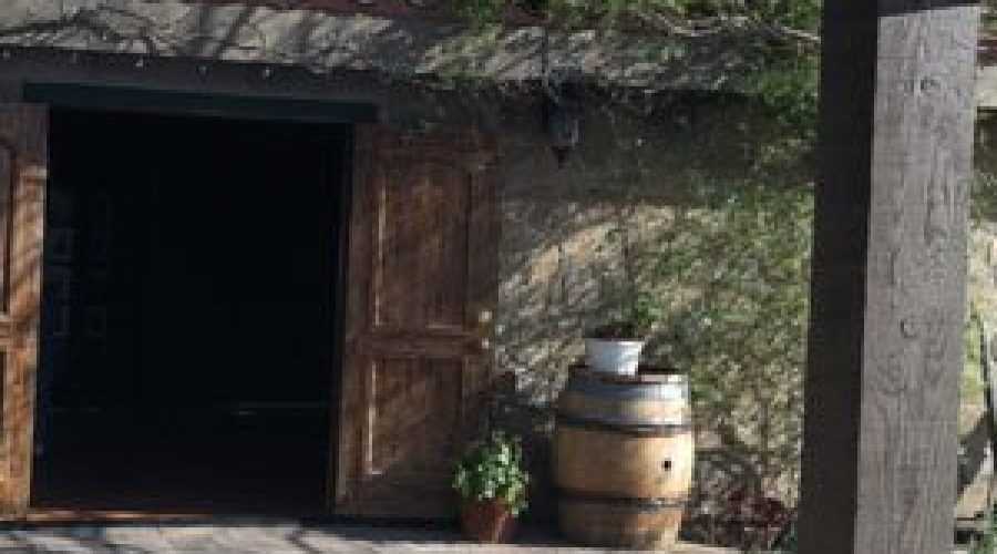 """""""Simple Concept, Complex Wines"""" – Palumbo Family Vineyards & Winery"""