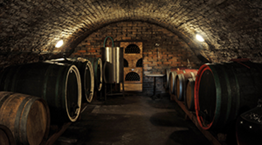 So you have a wine rack…what else should you know about wine storage?
