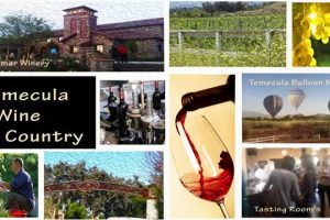 Lorimar Winery, inspired by Music and Art