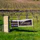 Lumiere – a truly beautiful small winery