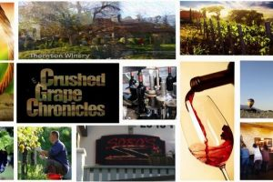 Longshadow Ranch, Vineyard & Winery