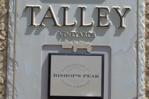 Talley Winery