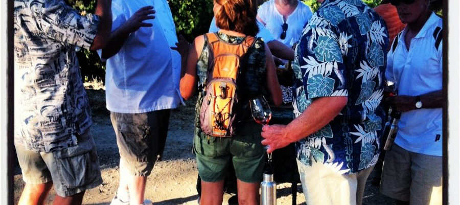 Tablas Creek Wine Walk
