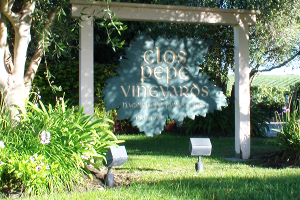 Clos Pepe Vineyard
