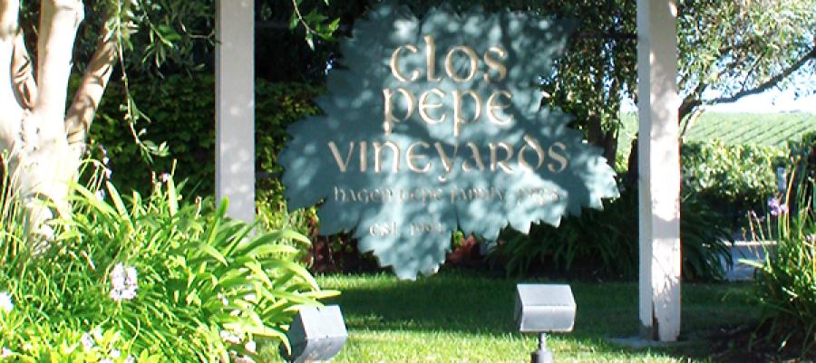 Clos Pepe Vineyard