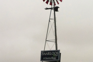 Windmill on Saarloos & Son's Windmill Ranch Vineyard