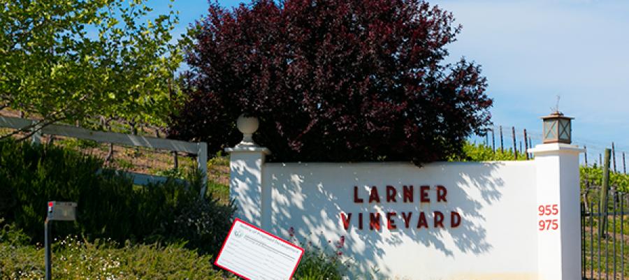 Larner Winery