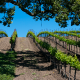 Key to Wine Country – An exclusive weekend in Santa Barbara