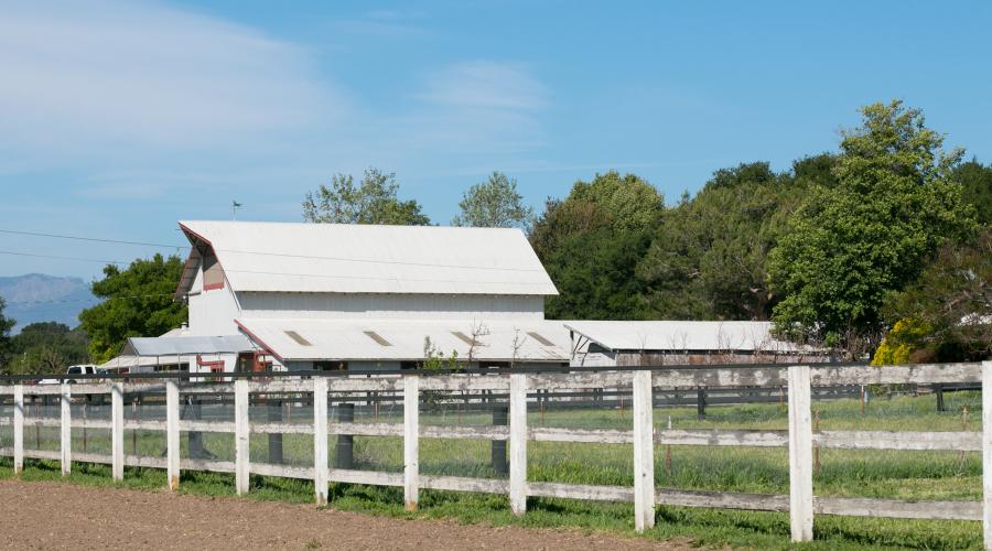 Buttonwood Farm, a Hidden Gem in Santa Barbara County