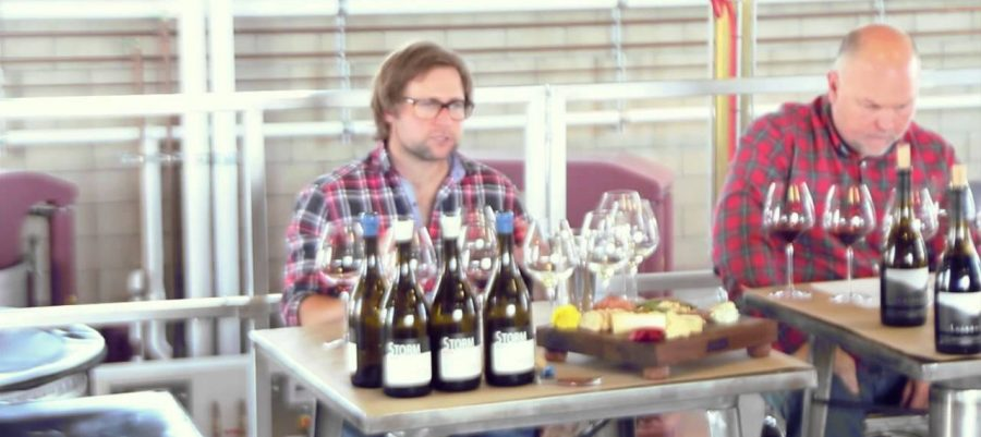 Presqu'ile Vineyard. Pinot Noir Part 2