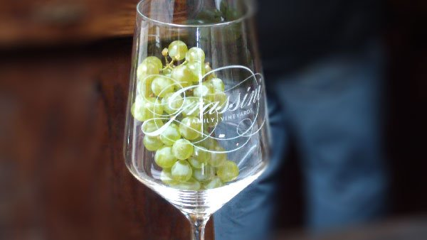 Grassini Sauvignon Blanc grapes