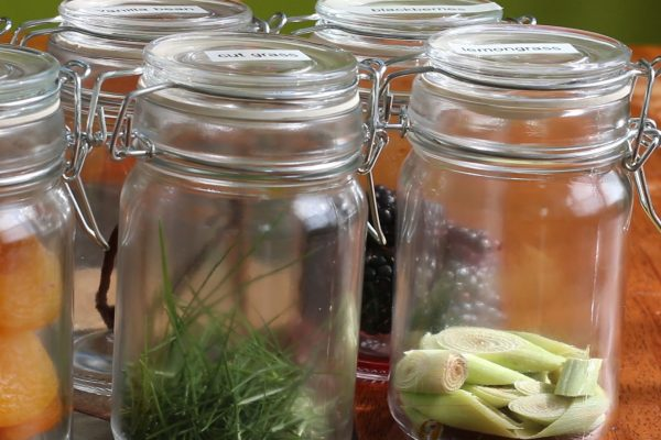 Cut Grass in Scent jar for Crushed Grape Chronicles Events