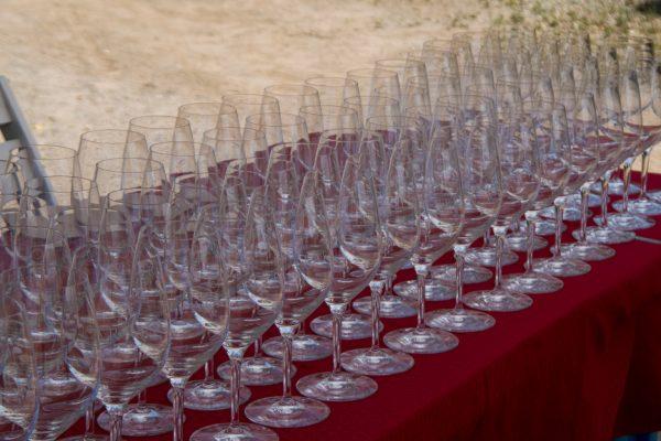Larner Fête 2016 glasses
