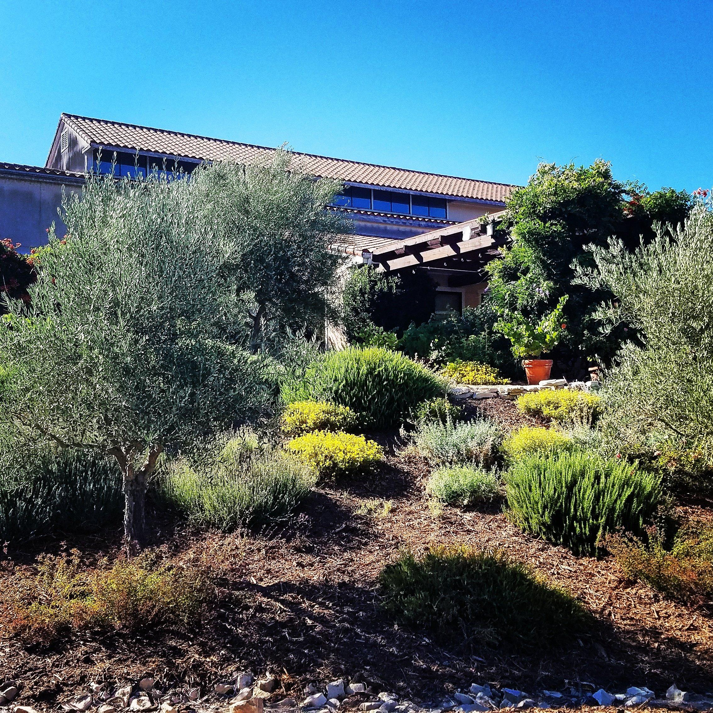 Tablas Creek Vineyard Winery in Paso Robles Adelaida AVA where they recently added Regenerative Organic Certification