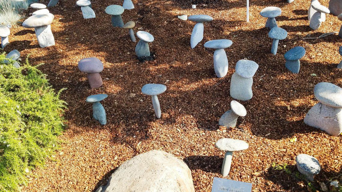 Rock Mushroom Garden by Rich Botto