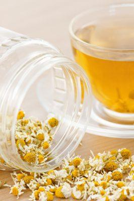 chamomile with tea_