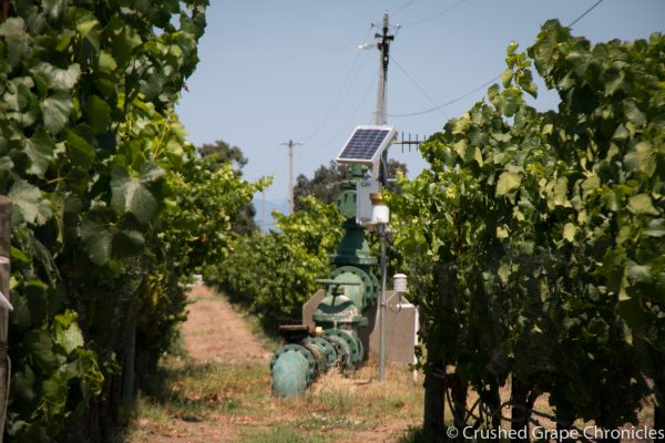 Balletto Vineyard, irrigation