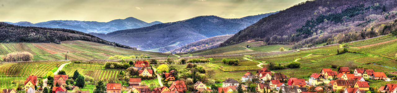 Famous wine route in the Vosges mountains Alsace France