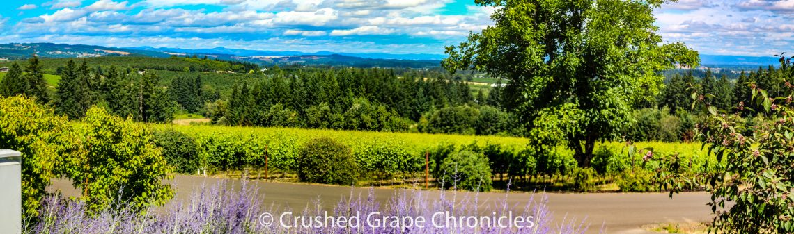 Ponzi Vineyard in the proposed Laurelwood AVA