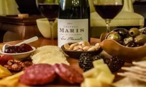 Livienière 2011 Les Planels a biodynamic French Wine
