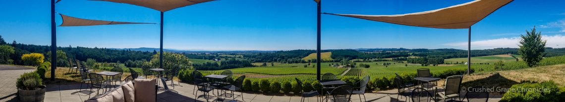 Illahe Vineyards Patio Panorama