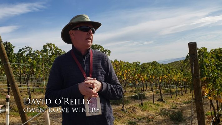 David O'Reilly, Owner Owen Roe Winery Yakima Washington