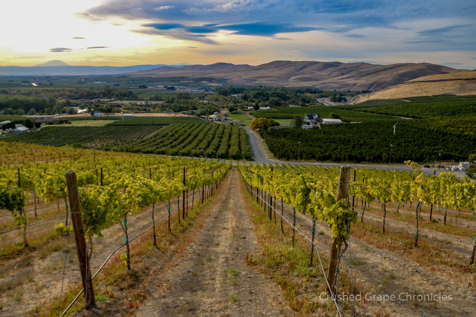 Owen Roe Winery, in Yakima Valley Washington