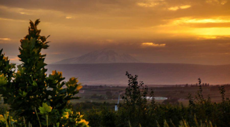 Owen Roe Yakima Valley