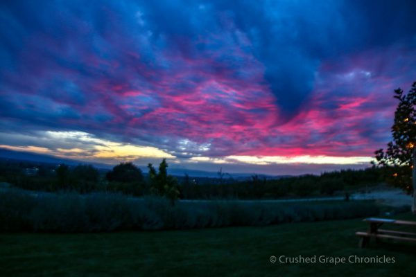 Sunset at Owen Roe Winery in Yakima Valley