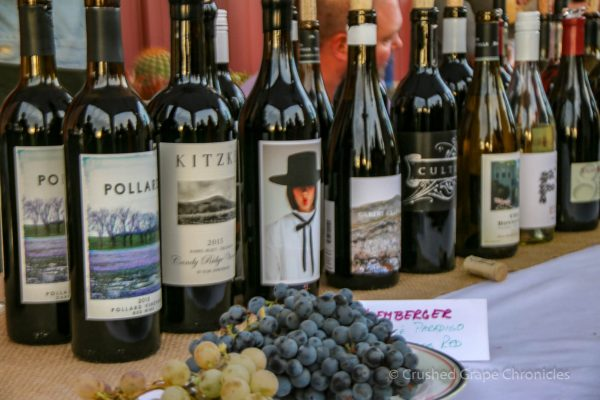 The line up of Yakima Valley wines for tasting at Flavor Camp