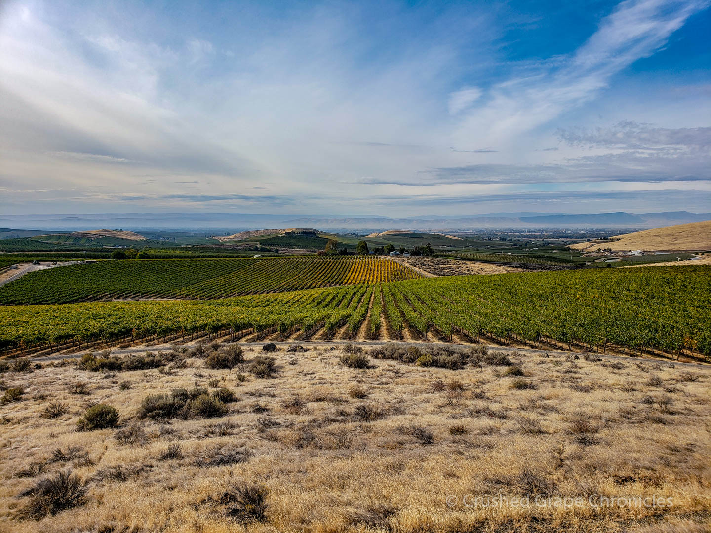 Looking South from Elephant Mountain Vineyard across the Yakima Valley
