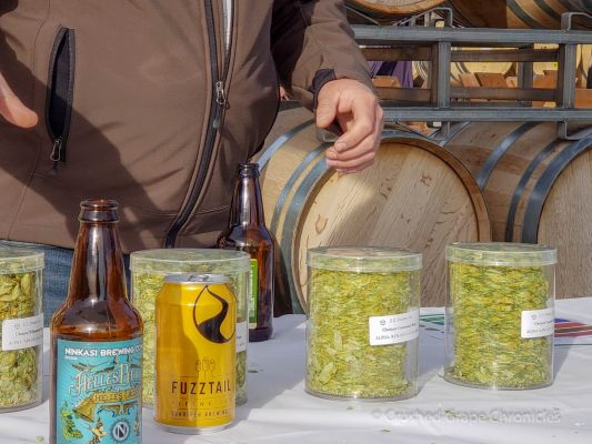 Hopsteiner Talk with Nicholi Pitra at Yakima Valley Washington Flavor Camp