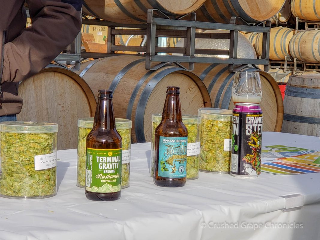 Hopsteiner Talk with Nicholi Pitra at Yakima Valley Washington Flavor Camp