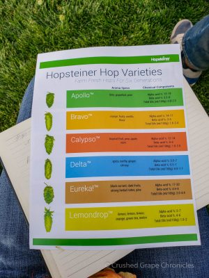 Hopsteiner Talk with Nicholi Pitra at Yakima Valley Washington Flavor Camp, Hop Varities