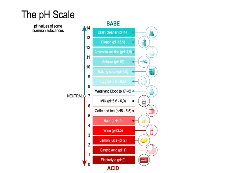 When you measure a wine's pH keep in mind that the lower the pH, the stronger the acid. Wine typically lands between 2.9 and 3.9 on the pH scale, and a wine at 2.9 will be more acidic than a wine at 3.9.