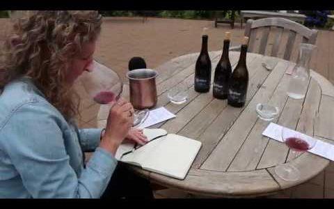 Beckham Wines, The Story