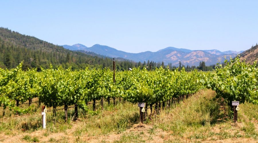 The Scenic Route – Flash Tour 2019 Part 2 – Southern Oregon Applegate and Umpqua Valleys