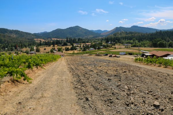 View from Girardet and the Shale Rock Summit Vineyard in Southern Oregon
