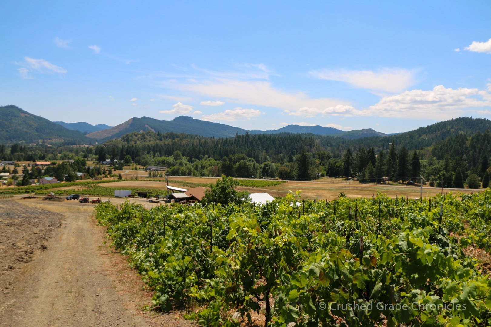 The view of Ten Mile from Giraradet Vineyard in Southern Oregon