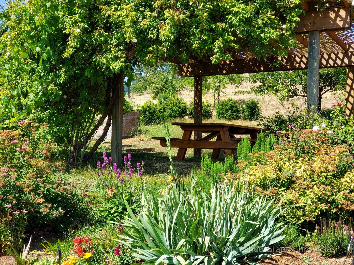 The picnic patio at Girardet