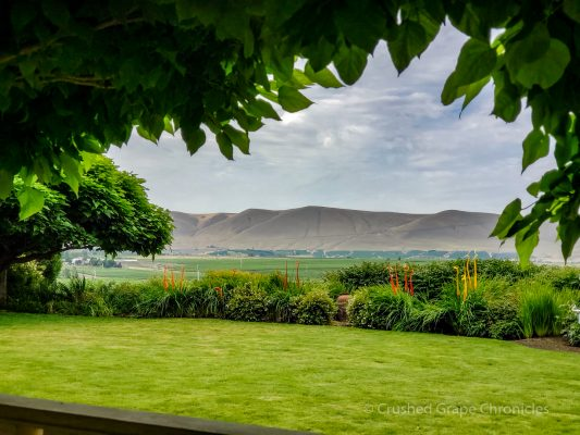 View from the Hedges Family Estate on Red Mountain