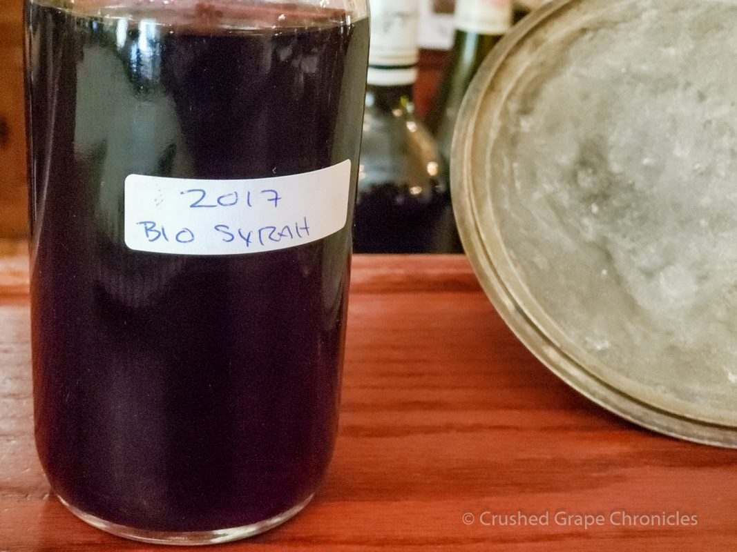 2017 Biodynamic Syrah Barrel Sample at Hedges Family Estate Red Mountain Yakima Valley Washington