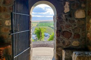 Red Willow Vineyard In Yakima Washington from Within the Chapel